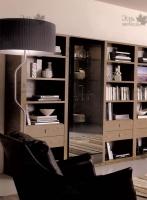 <p> Книжный шкаф в гостиной.</p>